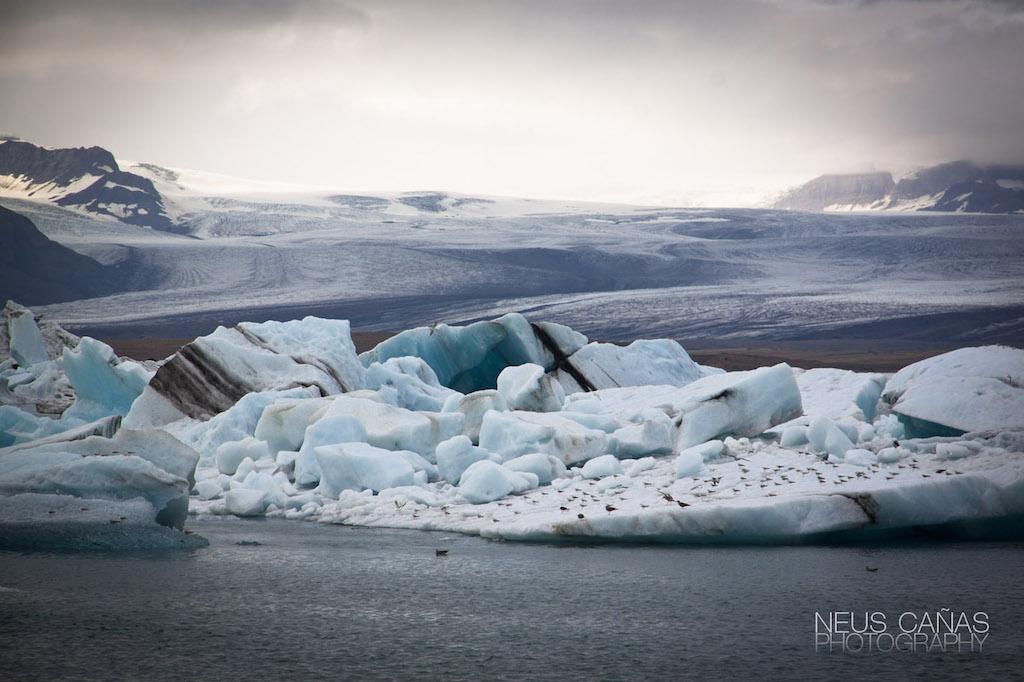 Jokulsarlon , un glaciar que acaba en un lago formando un espectáculo de otra dimensión. Foto de ©Neus Cañas.